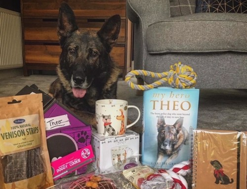 My Hero Theo – A Book for Dog Lovers
